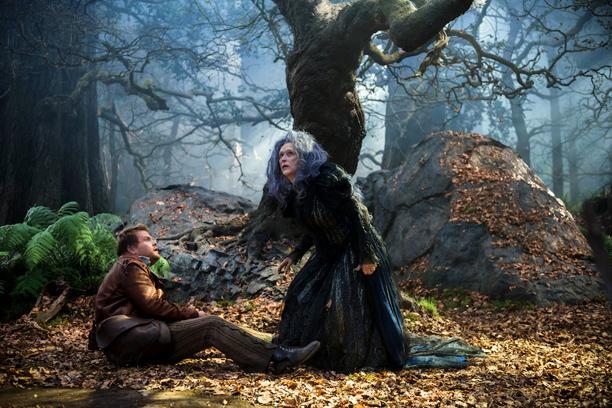 ดูหนัง Into the Woods อินทู เดอะ วู้ด